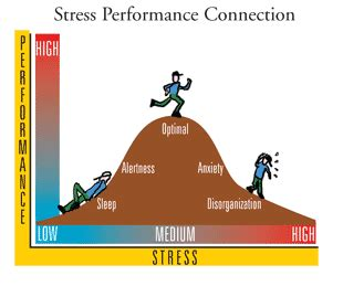 Physical effects of stress essay